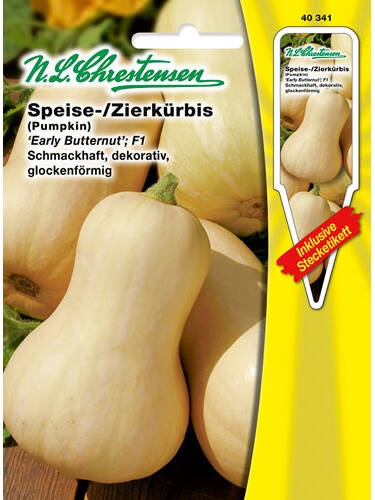 Samen - Speise- / Zierkürbis Early Butternut F1 (Portion inkl. Stecketikett)