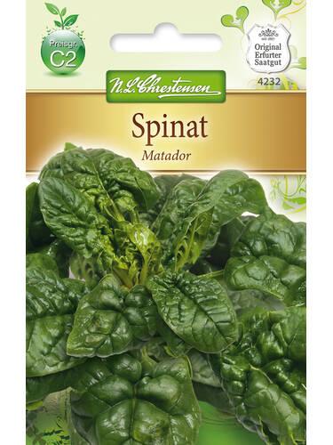 Spinat Matador Samen Fur Spinat Und Mangold Gartenversandhaus De