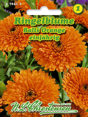 Samen - Ringelblume Balls Orange (Portion)