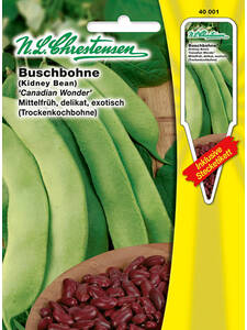 Buschbohne (Kidney Bean) Canadian Wonder