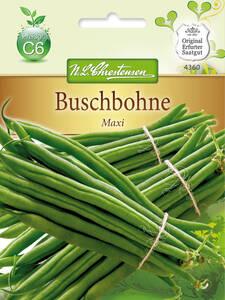 Buschbohne Maxi GS Portion