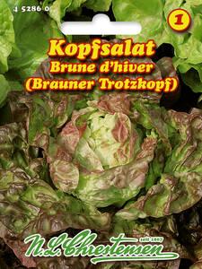 4191 Chrestensen Kopfsalat /'Kagraner Sommer 2/' Sommeranbau Salat Samen
