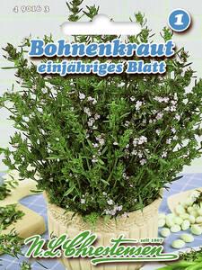 490358 Gartenpimpinelle Quedlinburger Blatt Saatgut Samen Gewürze Kräuter