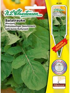 4202 Chrestensen Kopfsalat /'Pirat/' Sommeranbau  Salat  Samen