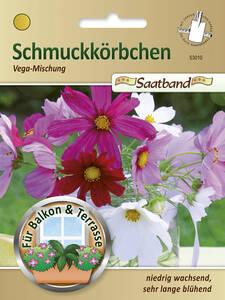 Samen Fur Balkonpflanzen Gartenversandhaus De Seite 2
