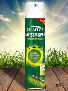 Substral Celaflor® Ameisen-Spray