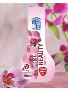 Protect Garten Top Beauty Orchidee